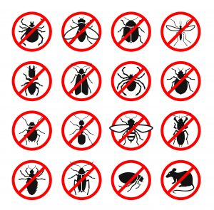 Pest Control Commercial Buildings